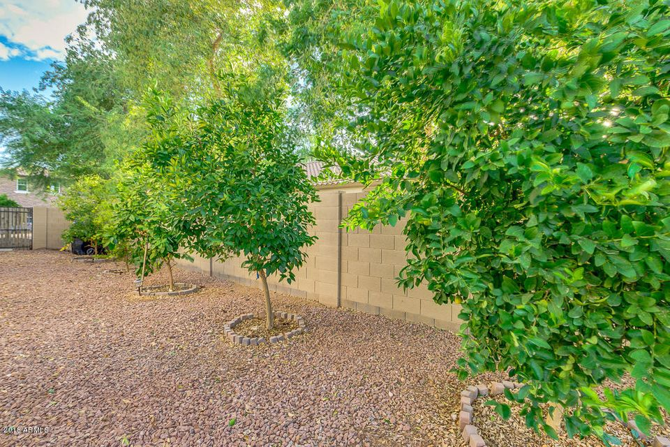 MLS 5790147 2058 E HACKBERRY Place, Chandler, AZ 85286 Chandler AZ Markwood North