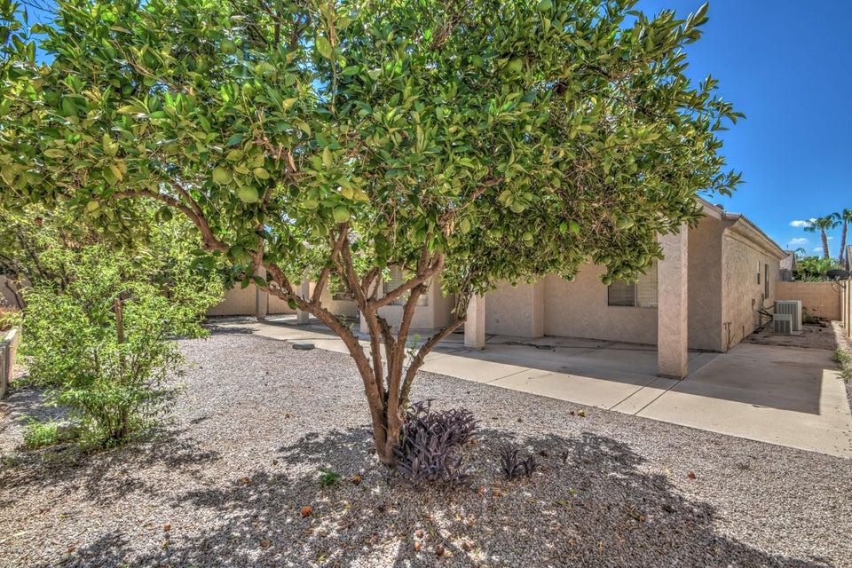 MLS 5793384 5216 E ANGELA Drive, Scottsdale, AZ 85254 Scottsdale AZ Arabian Views