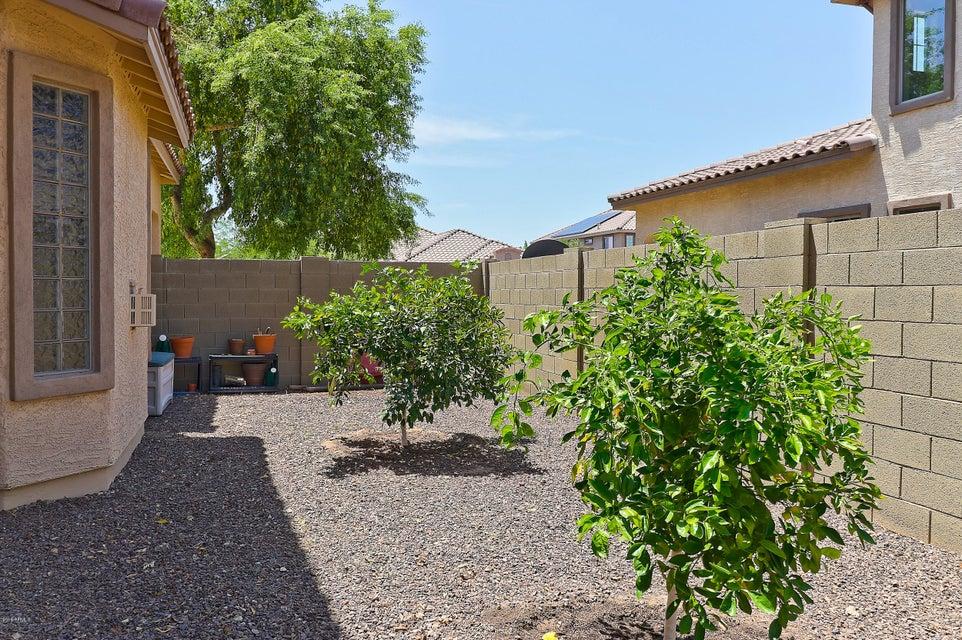 MLS 5793606 15242 W ELM Street, Goodyear, AZ 85395 Goodyear AZ Palm Valley