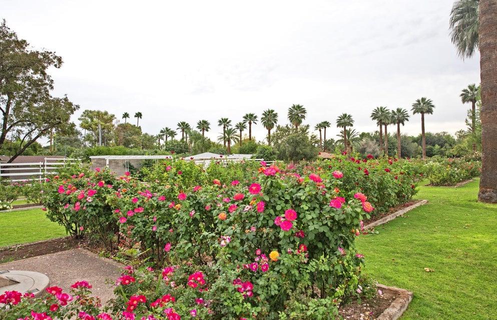 MLS 5793836 1315 W HOLLY Street, Phoenix, AZ 85007 Phoenix AZ Encanto