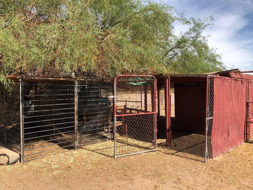 MLS 5796327 49929 W GAIL Lane, Maricopa, AZ Maricopa AZ Equestrian
