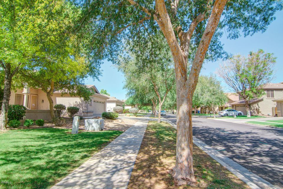 MLS 5796606 3371 E Lexington Court, Gilbert, AZ 85234 Gilbert AZ Higley Groves