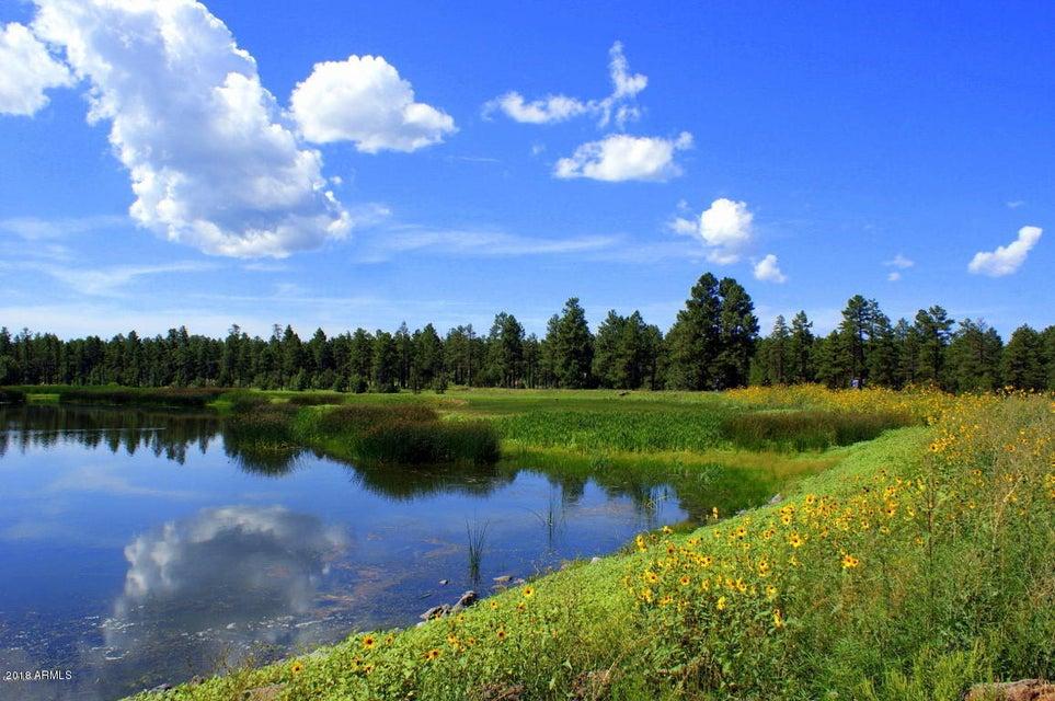 MLS 5803717 3821 Turkey Track Road, Pinetop, AZ Pinetop AZ Equestrian