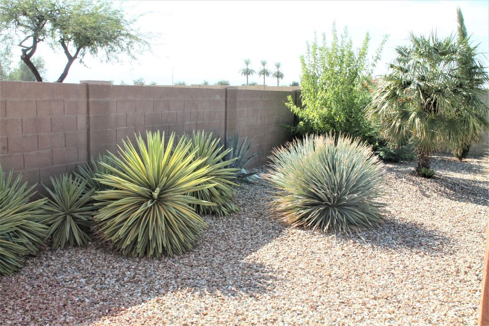 MLS 5808595 15136 W PIERSON Street, Goodyear, AZ Goodyear AZ Luxury
