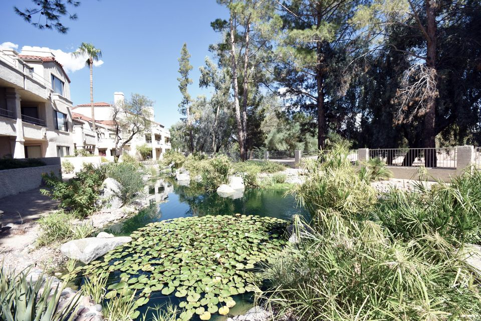MLS 5816760 10080 E Mountain View Lake Drive Unit 306 Building, Scottsdale, AZ Scottsdale AZ Near Water