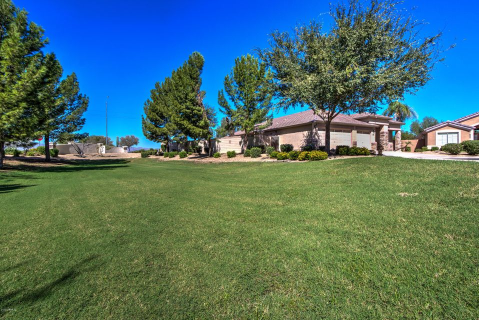 MLS 5819400 13022 W Rosewood Drive, El Mirage, AZ 85335 El Mirage AZ Luxury