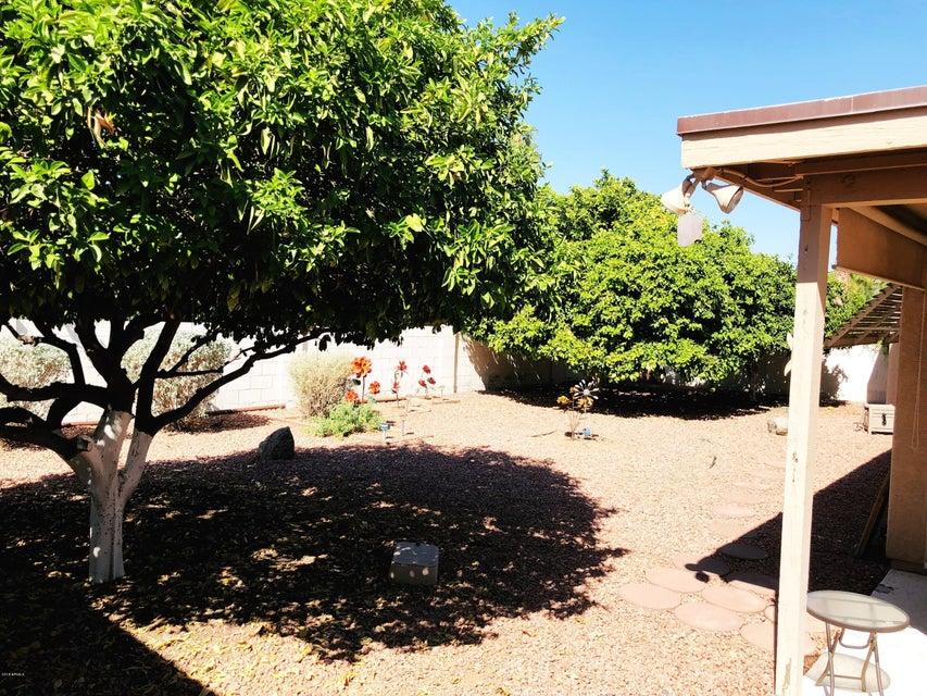 MLS 5819875 25868 S BEECH CREEK Drive, Sun Lakes, AZ 85248 Sun Lakes AZ Cottonwood