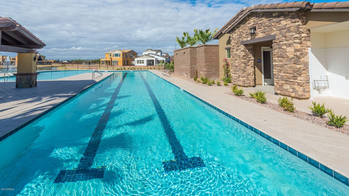 MLS 5791546 940 W YOSEMITE Drive, Chandler, AZ Community Pool
