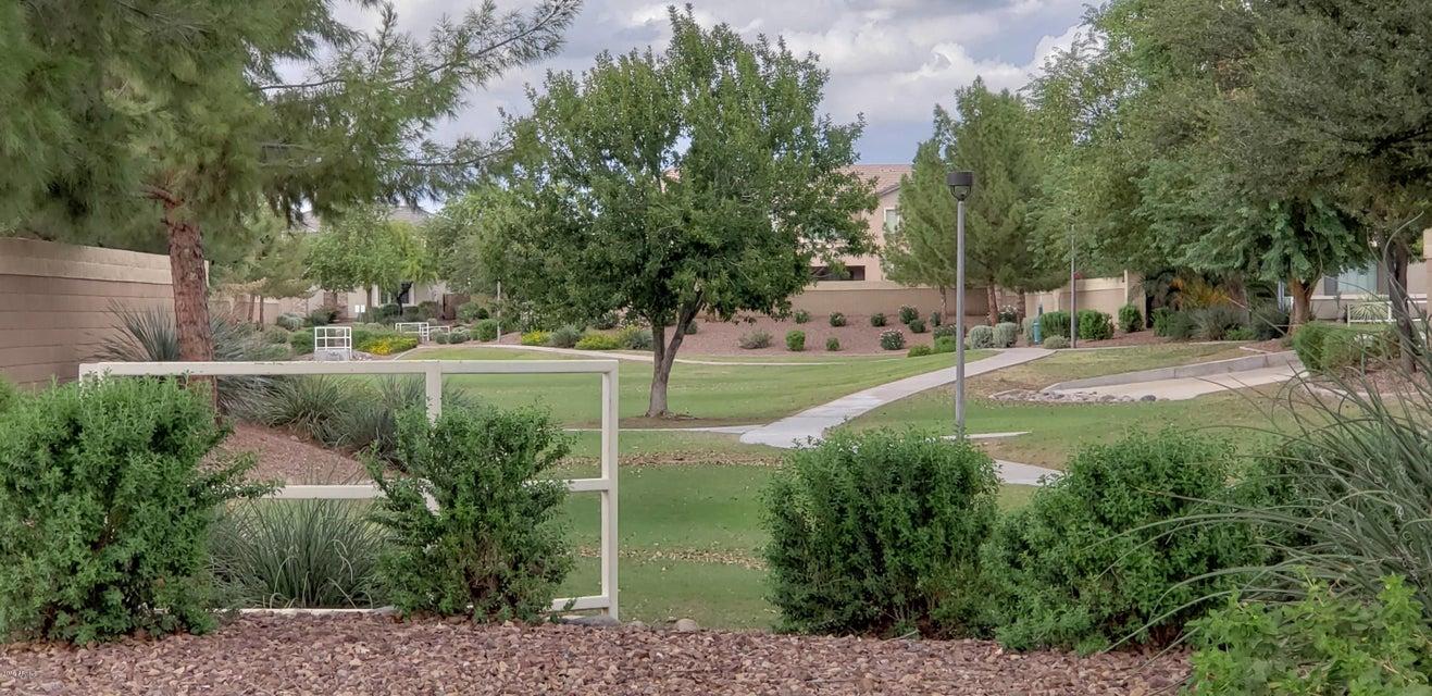 MLS 5831375 13603 W CATALINA Drive, Avondale, AZ 85392 Avondale AZ Eco-Friendly