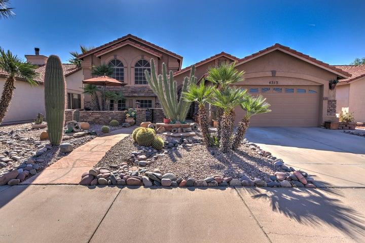 4313 E Frye Road Phoenix, AZ 85048