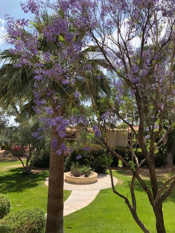 Photo of 9450 N 94TH Place #212, Scottsdale, AZ 85258