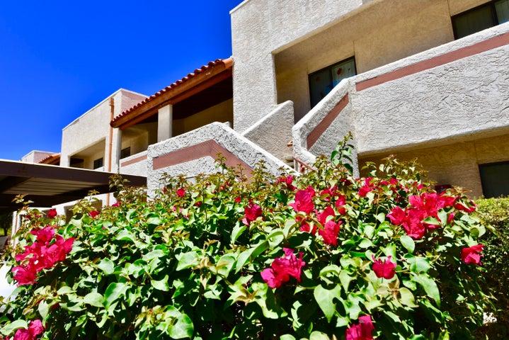Photo of 455 W KELSO Street #239, Tucson, AZ 85705