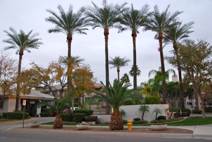 Photo of 4343 N 21ST Street #245, Phoenix, AZ 85016