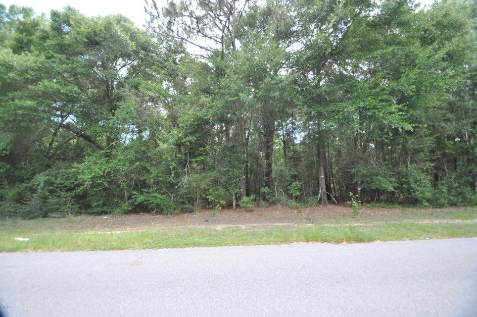 00 WILKERSON BLUFF Road, Holt, FL 32564