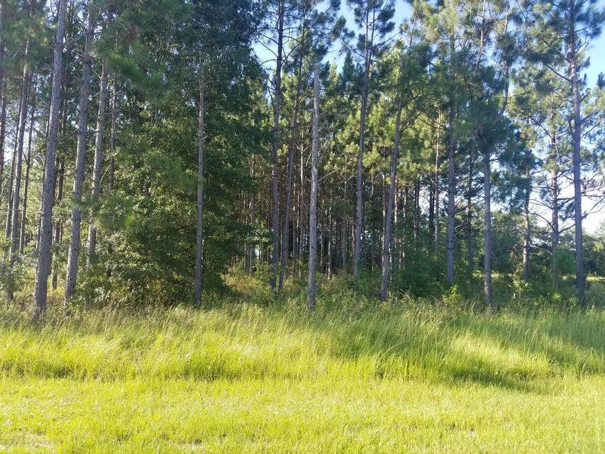 00 DUSTY LN/NE COUNTY RD 69A, Altha, FL 32421