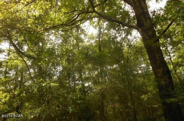 WOOD HILL, Ponce De Leon, FL 32455