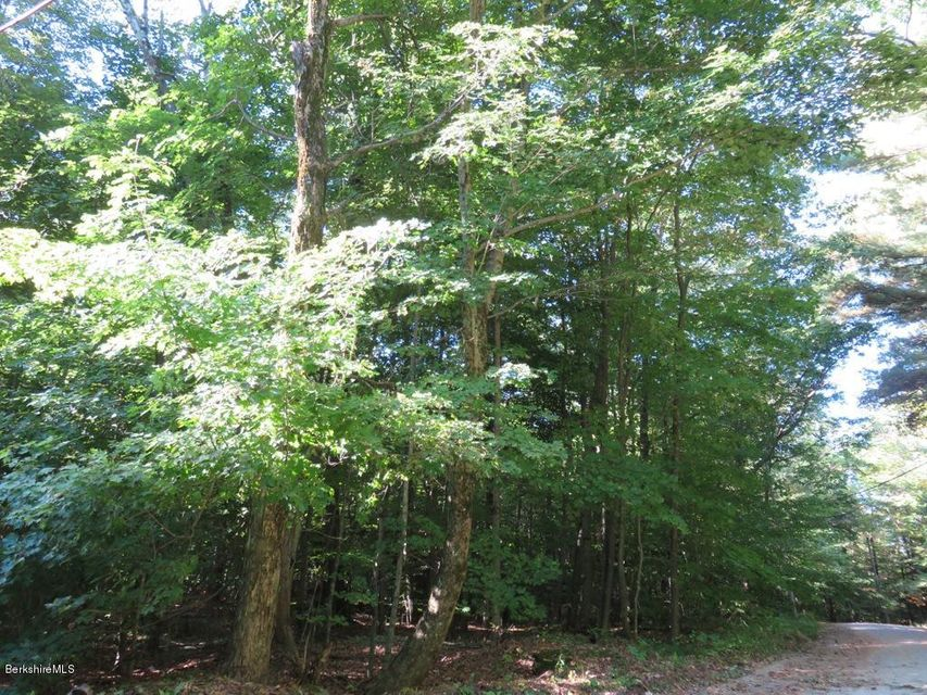 0 Pine Dale Cir, Becket, MA 01223