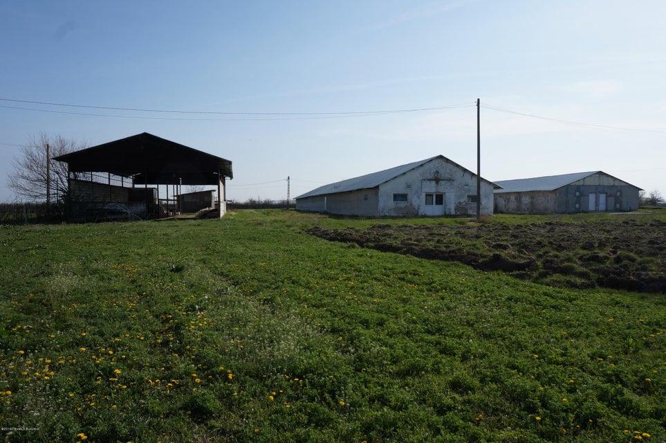 Vanzare Teren Intravilan 42000 m²