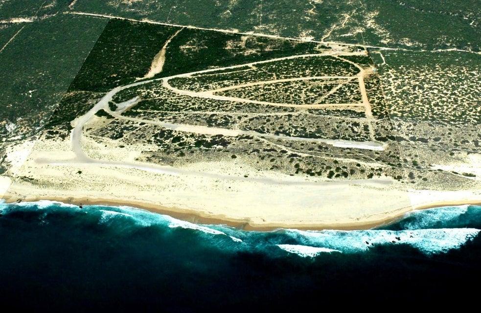 Cabo Vinorama Estates-1