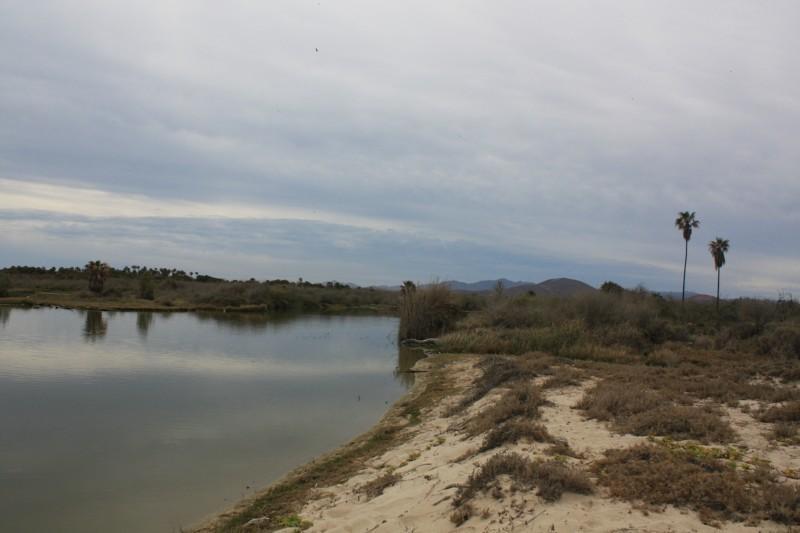 Rancho Los Pinos/ El Surgidero