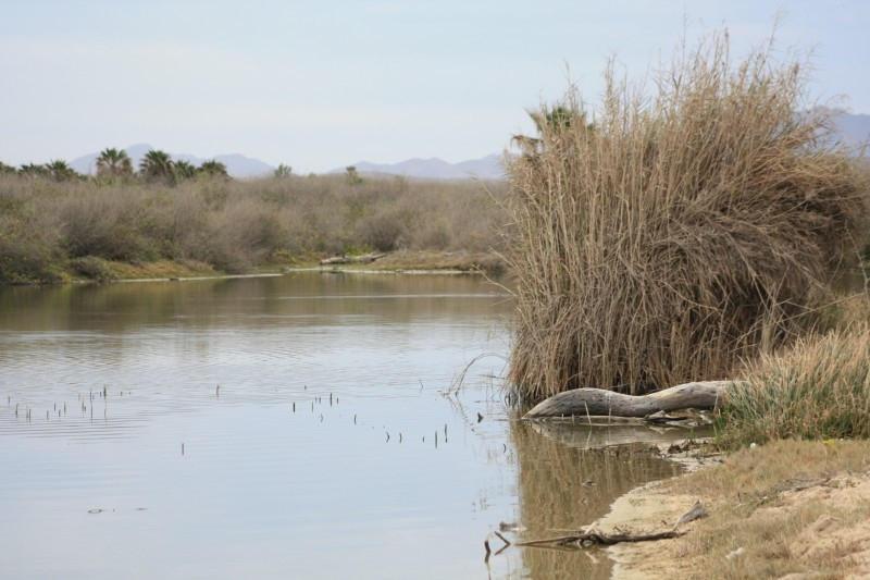 Rancho Los Pinos/ El Surgidero-1