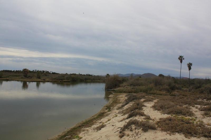 Rancho Los Pinos/ El Surgidero-2