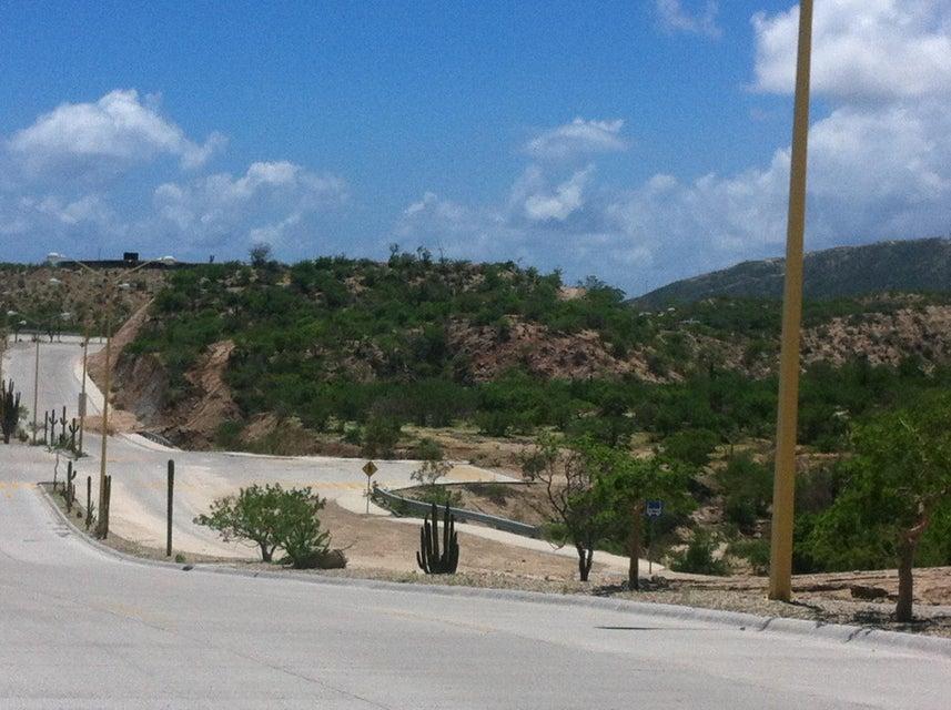 Developer Site Forjadores Blvd-11