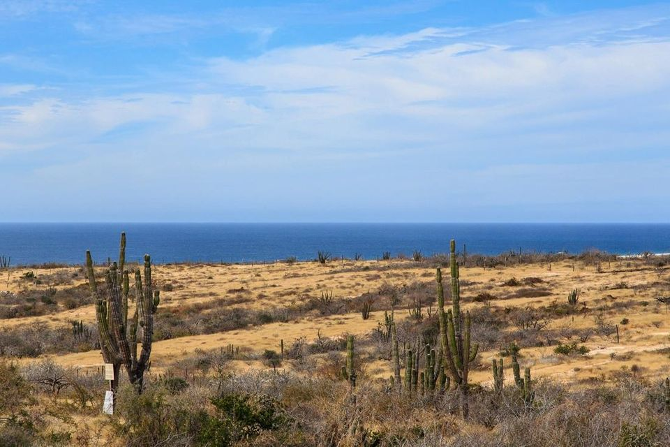 Ahorcadita to La Pastora Ocean