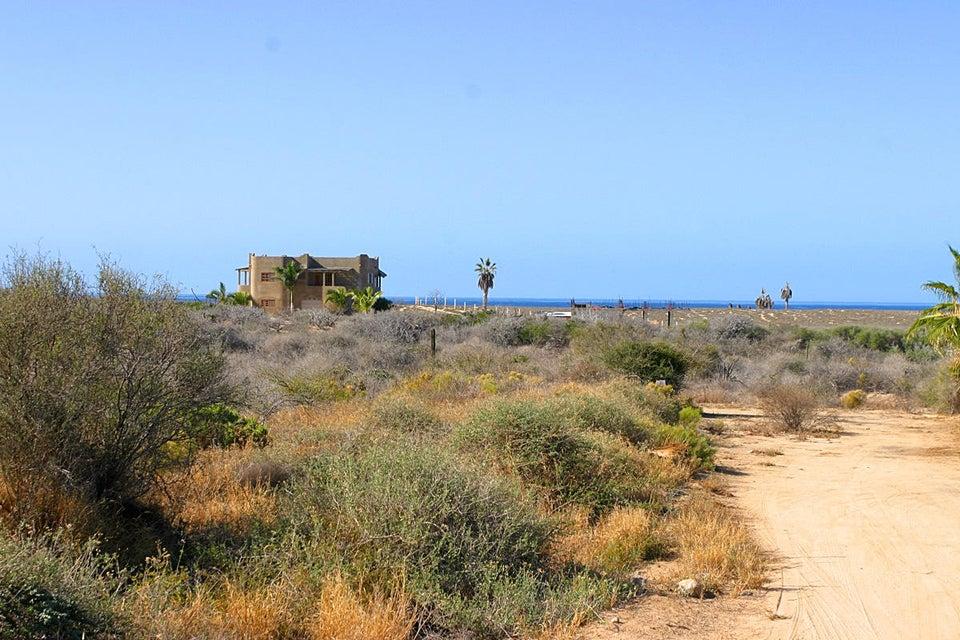 Cardon Lot La Playa #8