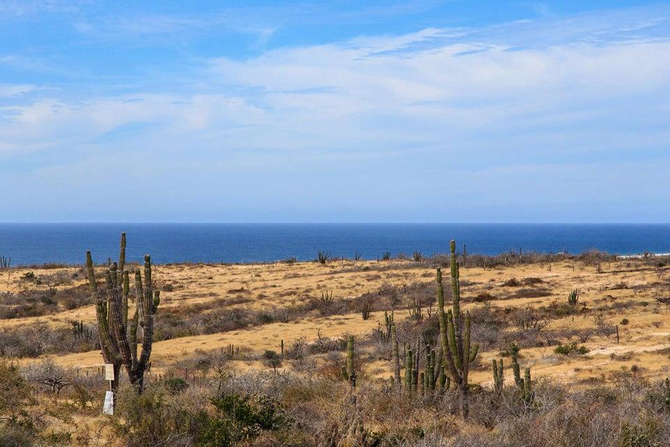 Ahorcadita to La Pastora Ocean-1