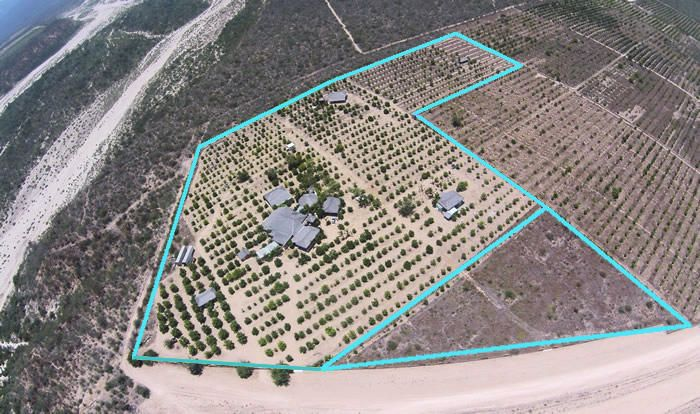 Rancho Mango Oasis-4