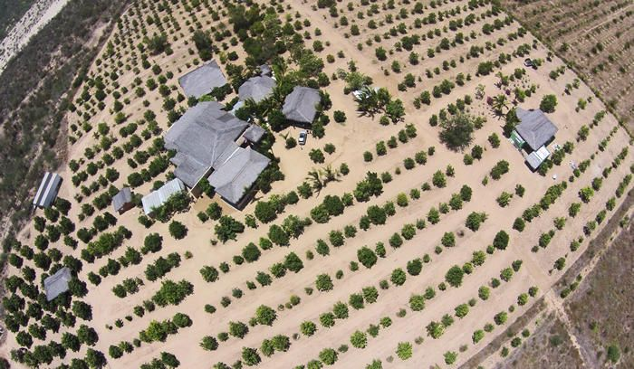 Rancho Mango Oasis-1