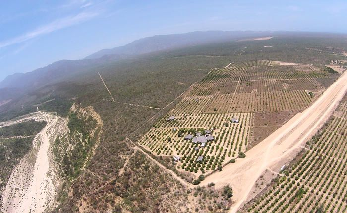 Rancho Mango Oasis-7