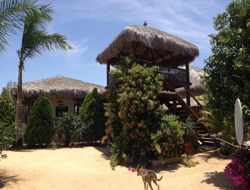 Rancho Mango Oasis-2