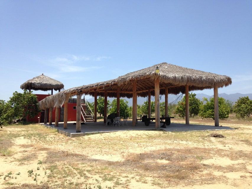Rancho Mango Oasis-9