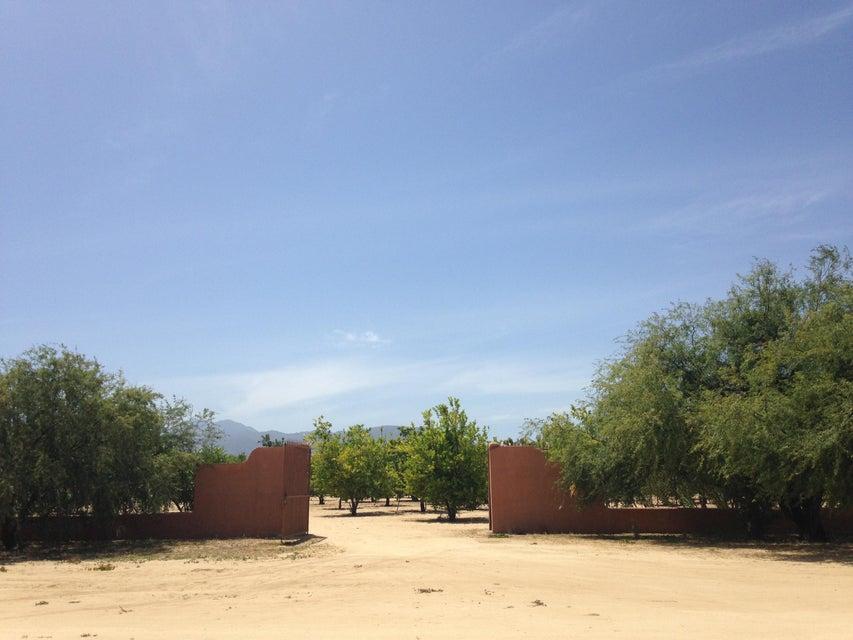 Rancho Mango Oasis-5