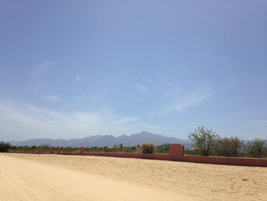Rancho Mango Oasis-6