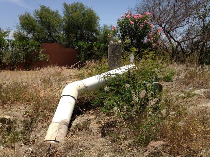 Rancho Mango Oasis-14