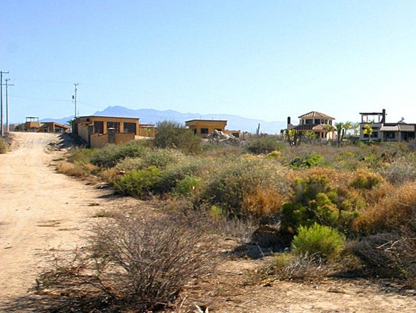 Cardon Lot LA Playa #4-5