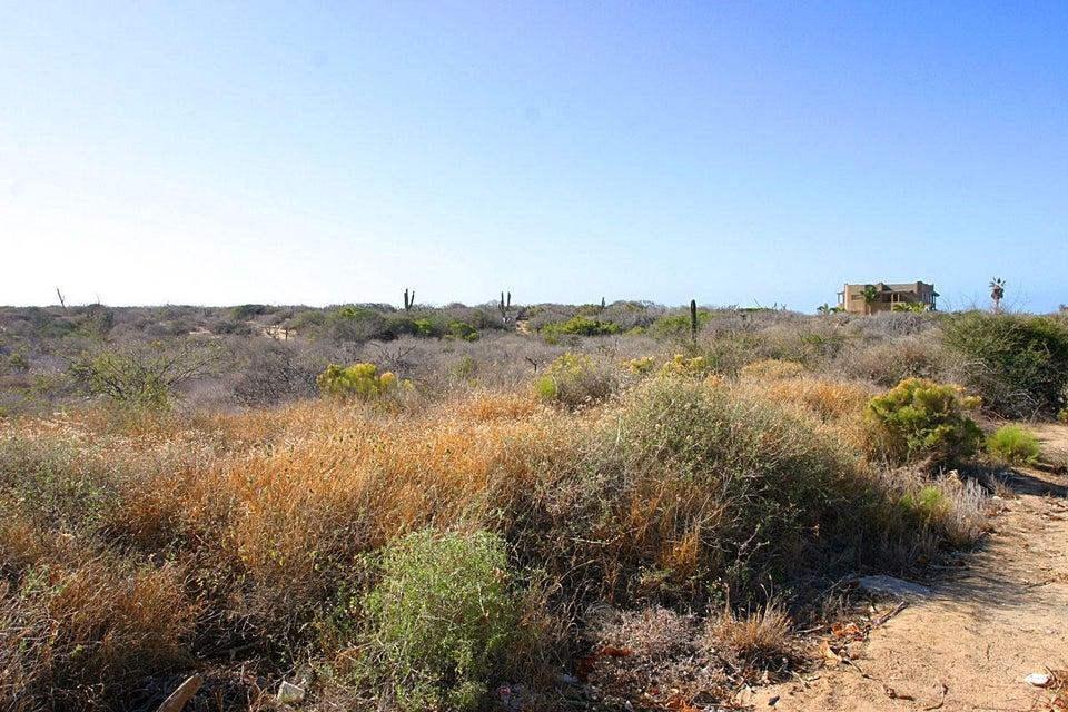 Cardon Lot La Playa #5-2
