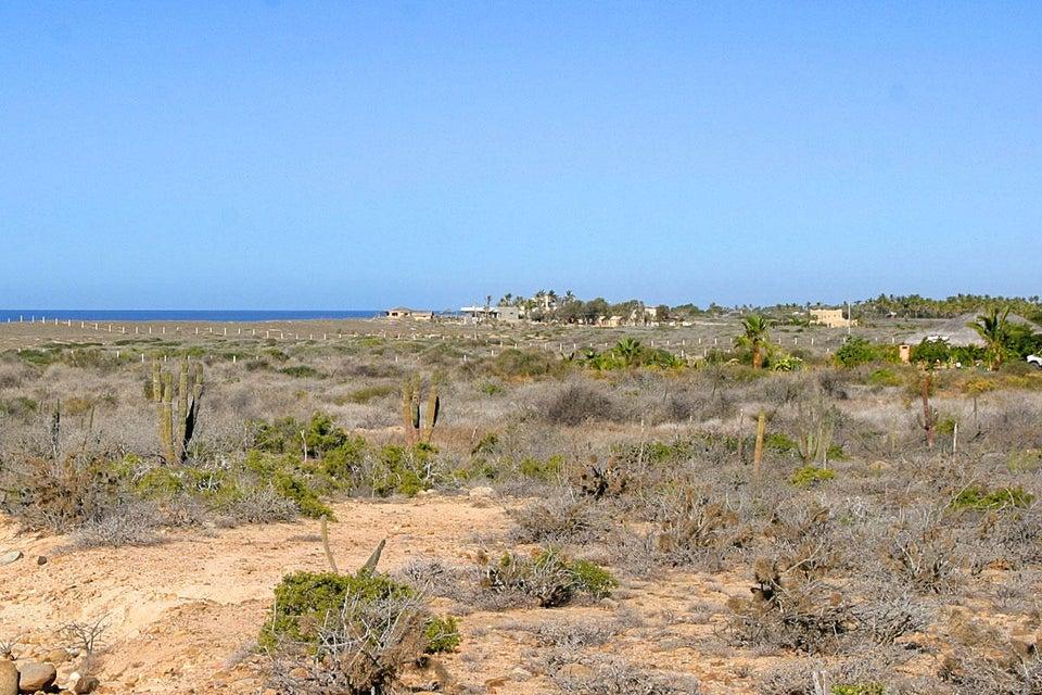 Cardon Lot La Playa #6-1