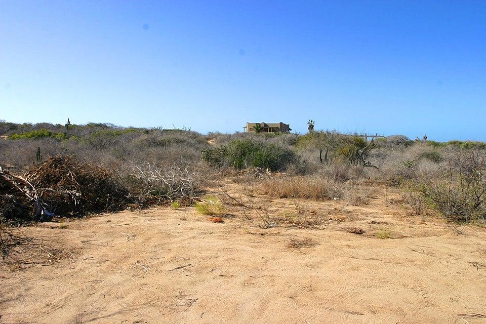 Cardon Lot La Playa #8-1