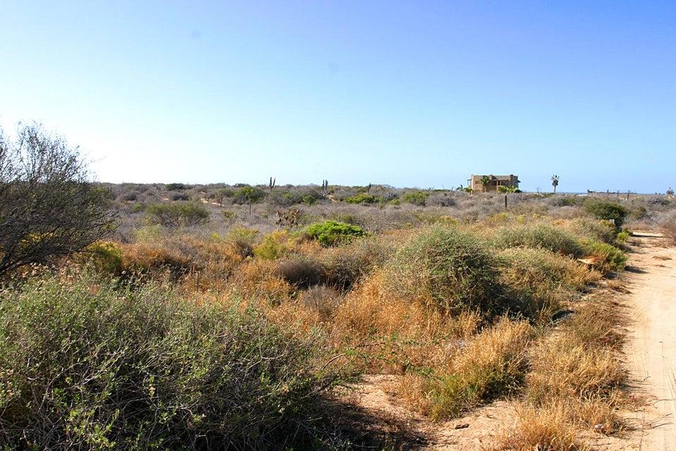 Cardon Lot La Playa #8-3