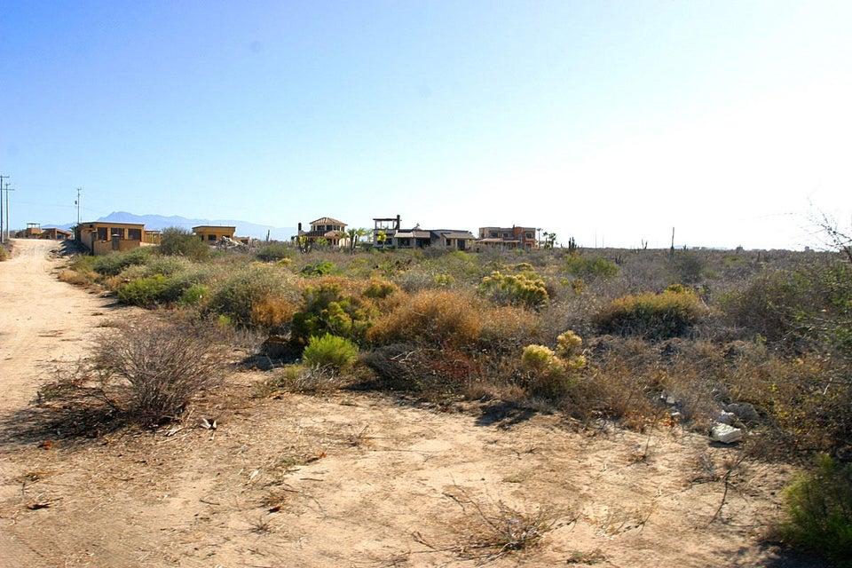 Cardon Lot La Playa #8-4