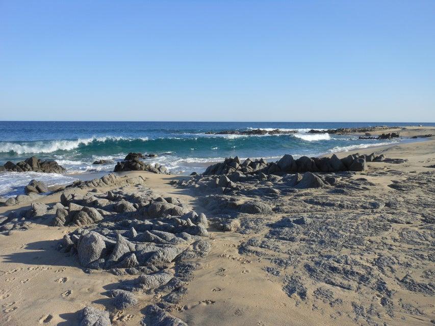 Punta Gorda-9