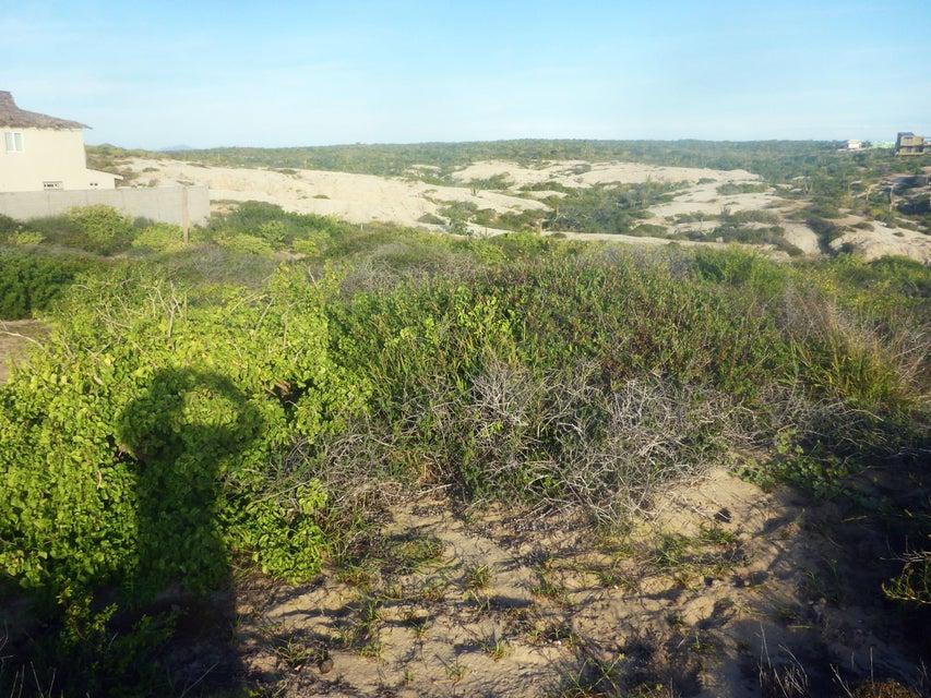 Playa Tortuga-2