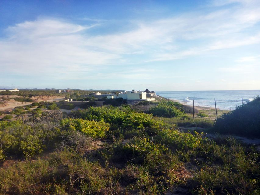 Playa Tortuga-3