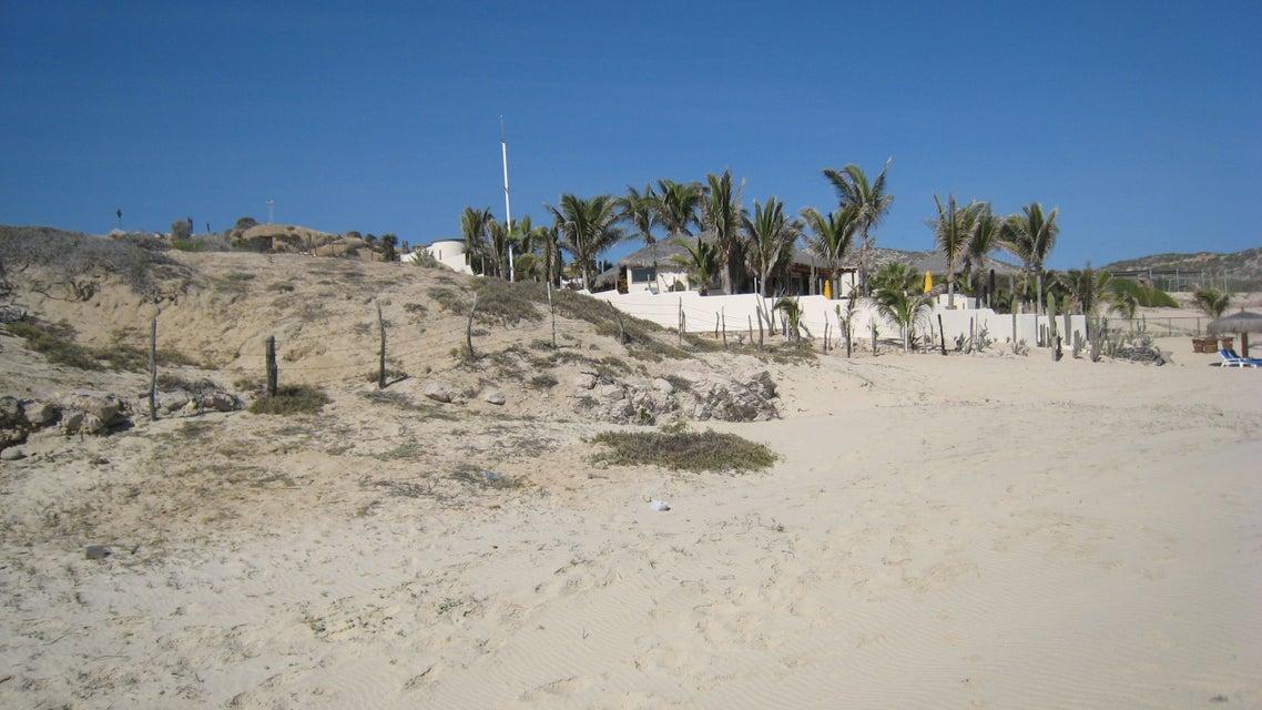 Boca de Las Palmas-2