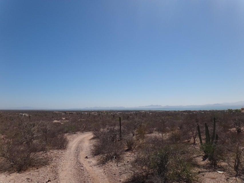 Predio Los Aripez-5