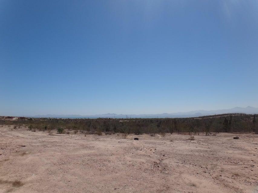Predio Los Aripez-6